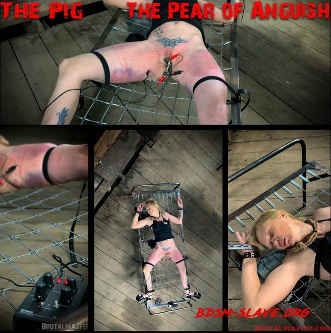 The Pig – The Pear Of Anguish (Brutal Master) [FullHD/2019]