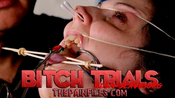 Bitch Trials (ThePainfiles) [FullHD/2020]