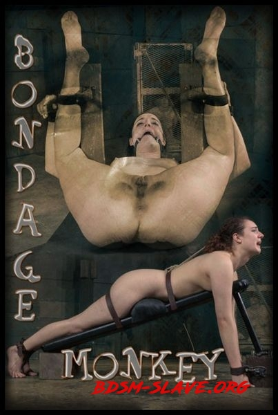 Bondage Monkey Part 3 – BDSM, Bondage [HD/2020]
