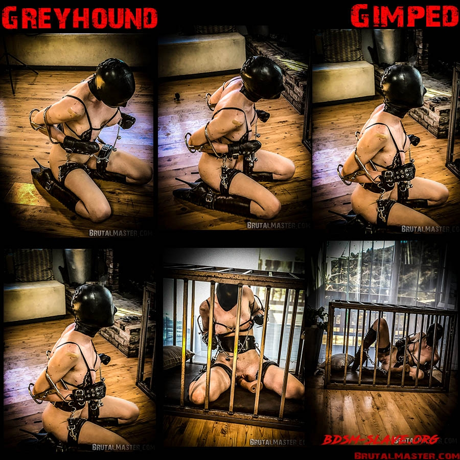 Greyhound Actress - Rachel Greyhound (BrutalMaster) [HD/2020]