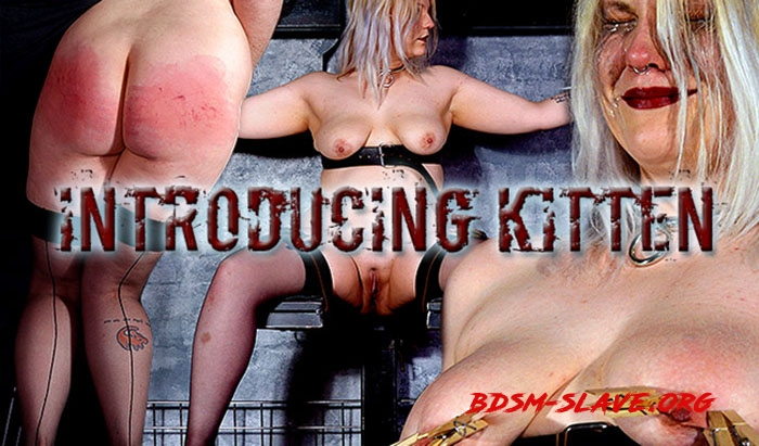 Slave Kitten Actress - Introducing Kitten (Shadow Slaves) [FullHD/2020]
