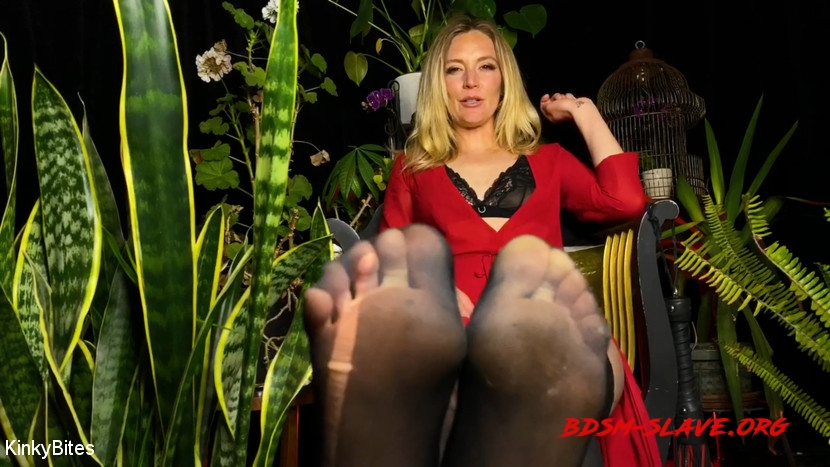 BDSM Actress - Mona Wales (KinkyBites) [HD/2020]
