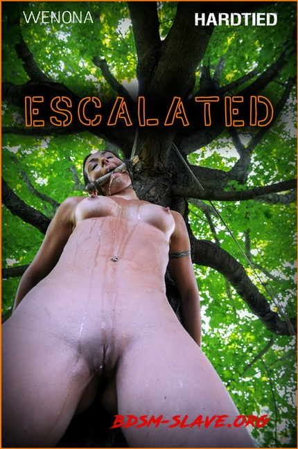 Escalated | Actress - Wenona (Hardtied) [HD/2020]