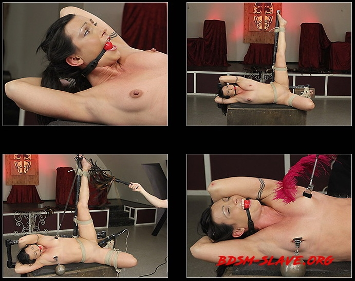 Wenona Tickled and Caned Actress - Wenona Slave (Society SM) [HD/2020]