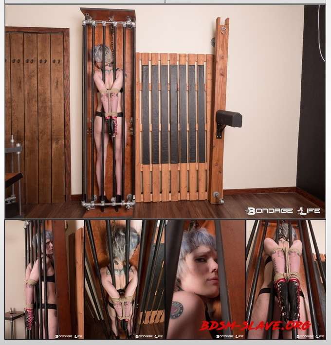 Hardcore Standing Cage Bondage Actress - Leeloo Stitch (Bondage Life) [HD/2020]