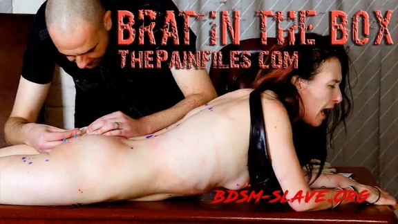 The Pain Files – Brat In The Box [FullHD/2020]